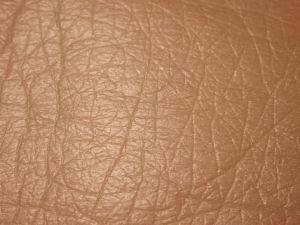a bőr méregtelenítése