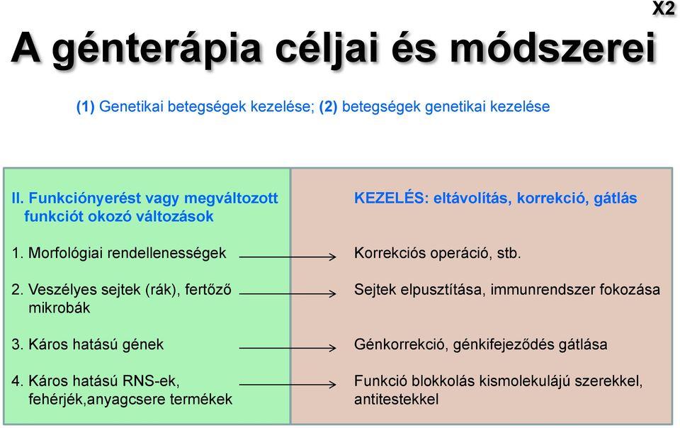rákos sejtek genetikai változásai