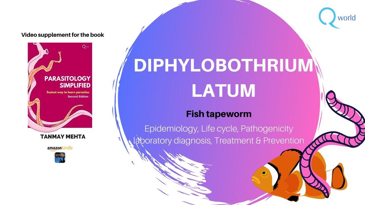 a diphyllobothriasis kezelése felnőttek kezelési rendjén