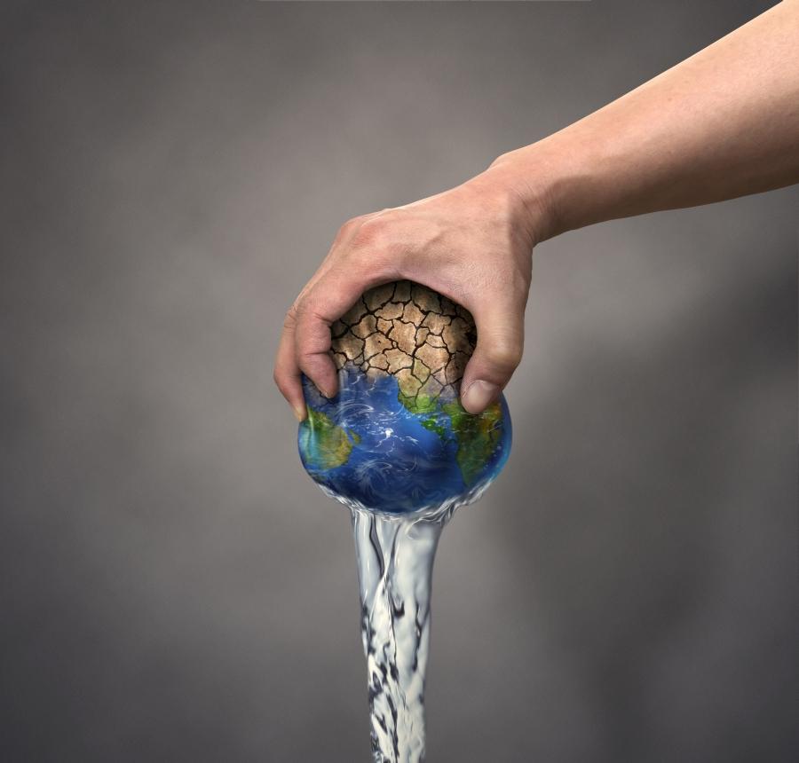 rák, amely víz vagy föld