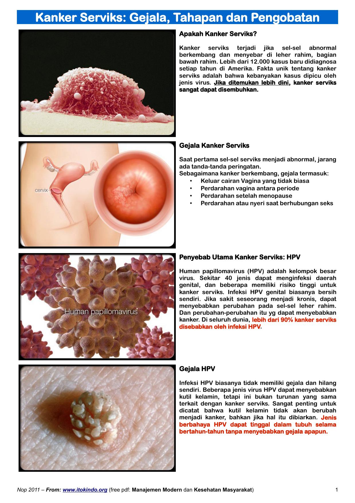 humán papilloma vírus penyebab penyakit