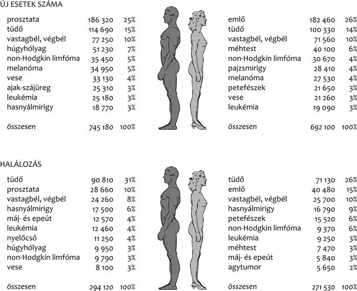 Mi a különbség a rák- és a HPV-szűrés között? - HáziPatika