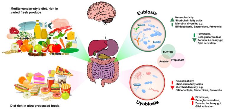 Dysbiosis hatások