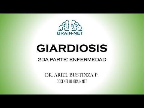 Enterobiosis gv vel - Féregkezelés a gv