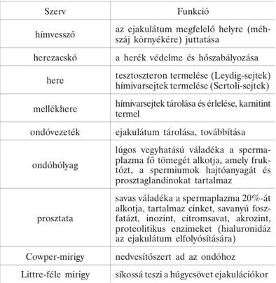 Condyloma immunmodulátor, Mi a különbség a condyloma és a papilloma között? A kezelés alapelvei