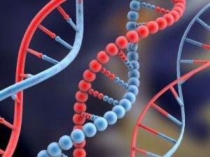 Nyaki rákvizsgálatok. Vérvizsgálat a rákos sejtekre
