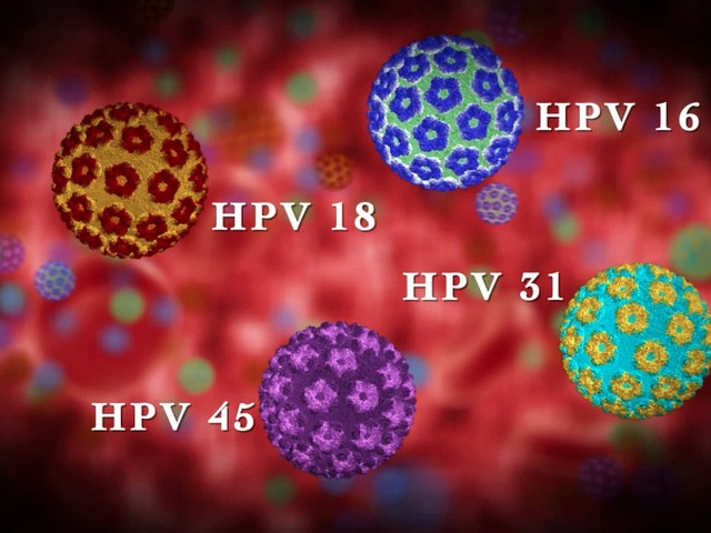 humán 16. típusú papillomavírus