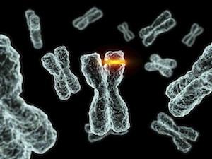 A HPV-fertőzés nem egyenlő a rákkal   Neumann Easy Testing