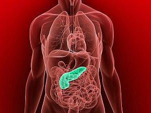 Milyen parazita tabletták a gyomor számára. Gyomor parazita kezelés