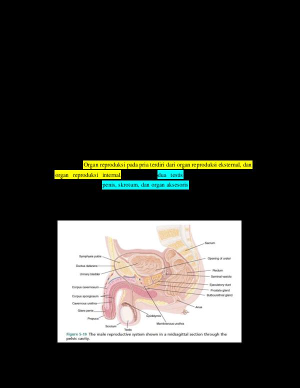 a genitális szemölcsök hőmérséklete