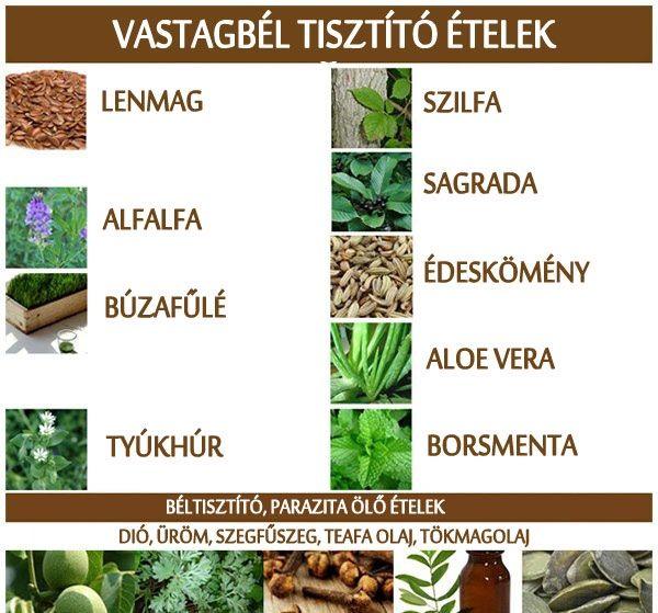természetes vastagbél méregtelenítő étrend