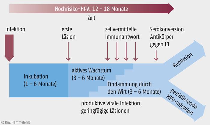 hpv impfung verlauf