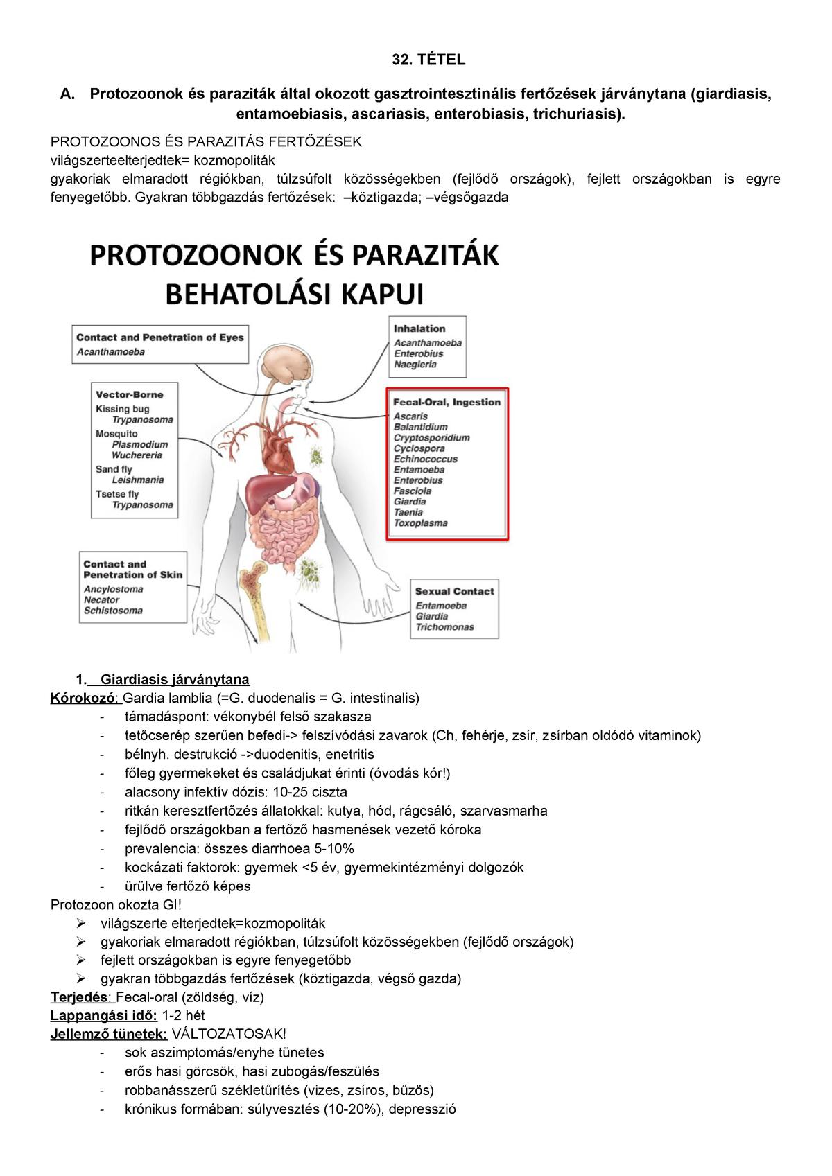 hogyan enged az enterobiosis?
