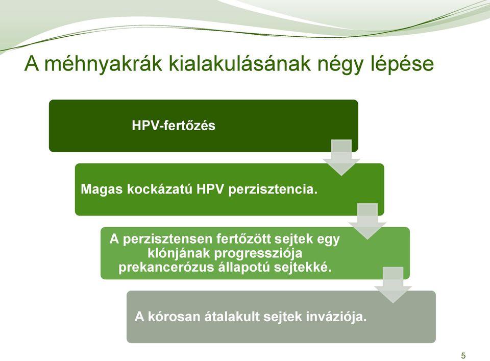 hpv magas kockázatú gyógymód