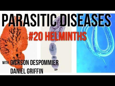 Klinika és a helminthiasis kezelése