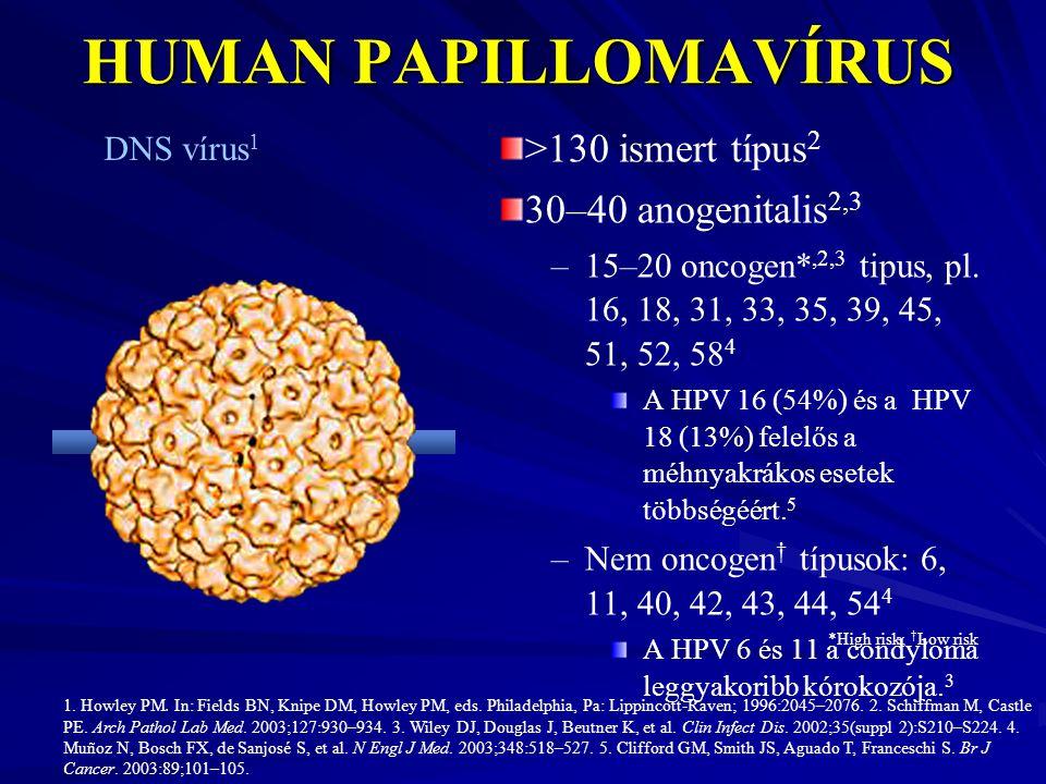 humán papillomavírus vakcina típus