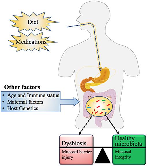 d-vitamin dysbiosis
