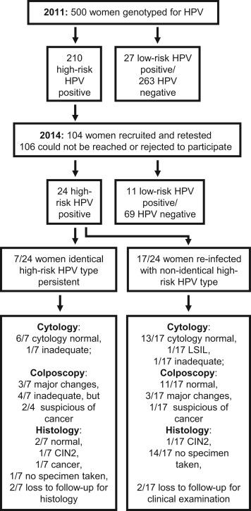 STD - szexuális úton terjedő betegségek