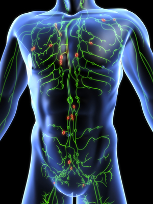 Sok esetben téves a rák terjedésének hagyományos TNM modellje | carbocomp.hu
