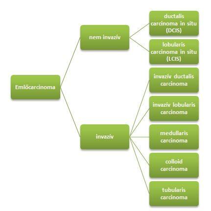 mutált vastagbélrák kezelése condyloma acuminata lsil