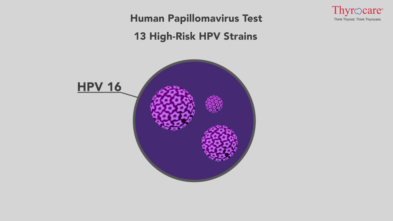 humán papillomavírus malayalam jelentése