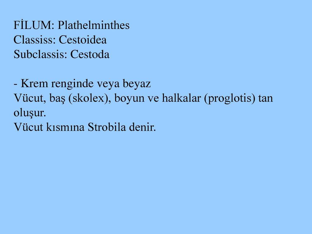 Görög jelentése görögül » DictZone Magyar-Görög szótár
