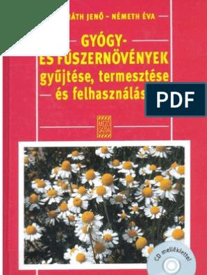A helminthosporium maydis ellenőrzése, A szántóföldi növények betegségei   Digitális Tankönyvtár